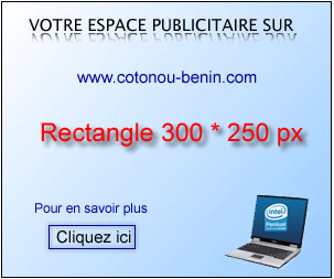 Publicité: Rectangle 300x250